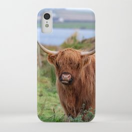 Long haired Highland cattle - Highland cow, Highlander, Heilan coo - Thurso, The Highlands, Scotland iPhone Case