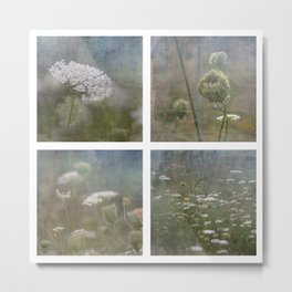 Queen Anne's Lace Botanical Series 1-4 Collage Metal Print