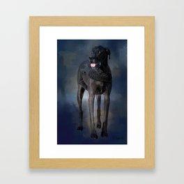 Great Dane - A Working Dog Framed Art Print