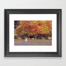 Autumn Cat Framed Art Print