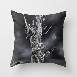 The ghost of Pinus longaeva 2. Throw Pillow