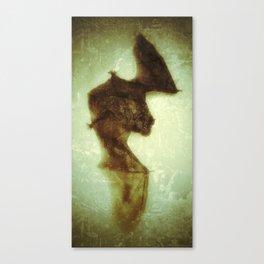little bat Canvas Print