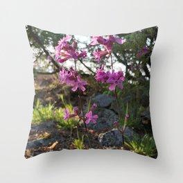 Garden designed by the nature - Viscaria vulgaris, clammy campion Throw Pillow