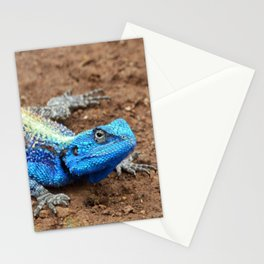 Authentic Agama Stationery Cards