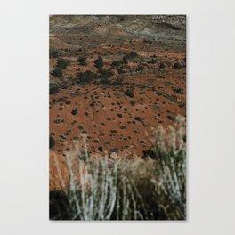 Desert Sun Canvas Print