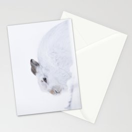 white mountain hare (lepus timidus) sitting on snow Stationery Cards