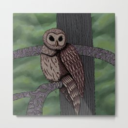 Owl Eyes on You Metal Print