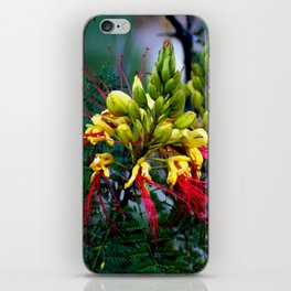 Exotic Plant iPhone Skin