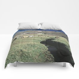 Wild horses 3000 meters hight Comforters