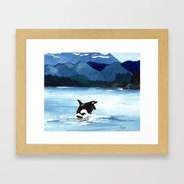 Orca Breach Framed Art Print
