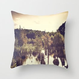 Dead Lakes With A Vintage Twist  Throw Pillow