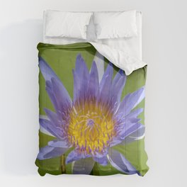 waterlilly Comforters