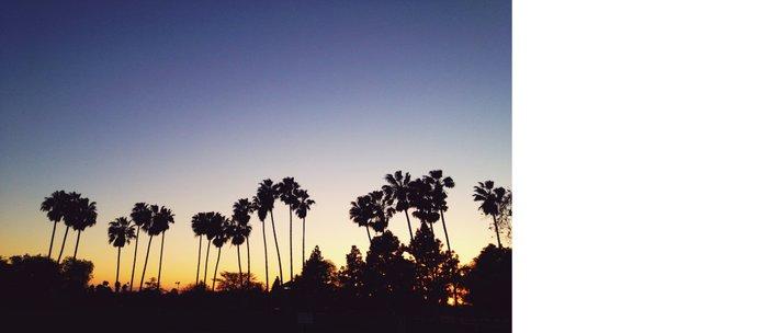 California Sunsets Coffee Mug