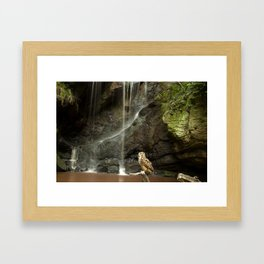 Eagle Owl and Waterfall. Framed Art Print
