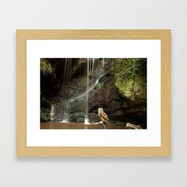 Eagle Owl and Waterfall. Framed Art Print