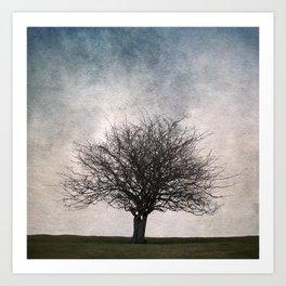 Lonely tree #2 Art Print