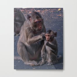 Mother and Baby Macaque Monkey Metal Print