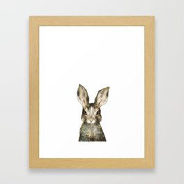 Little Rabbit Framed Art Print