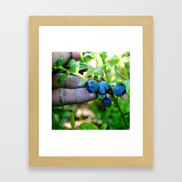 Blue Fingers and Berries Framed Art Print