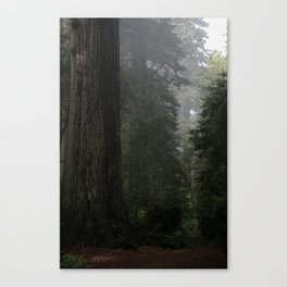 Before Beowulf Canvas Print