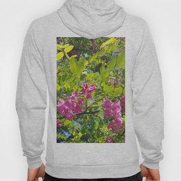 pink acacia Hoody