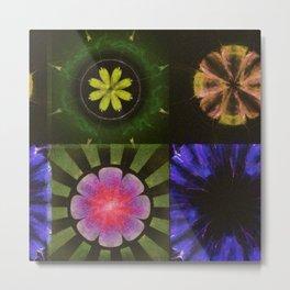 Brinish Symmetry Flowers  ID:16165-053020-45980 Metal Print