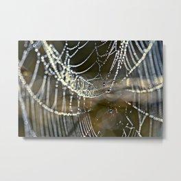 silver lights Metal Print