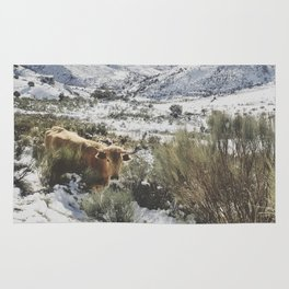 Wild cow at the mountains. Snowing. Rug