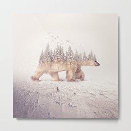 polar winter II Metal Print