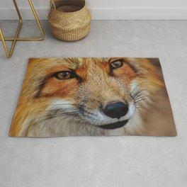 wild fox close up Rug