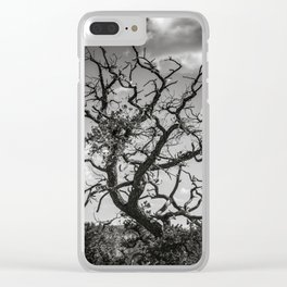 Crooked Tree Cloudy Sky Clear iPhone Case
