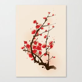 Oriental plum blossom in spring 012 Canvas Print