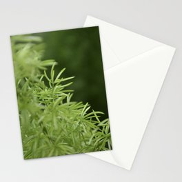 Soft Thin Leaves Stationery Cards