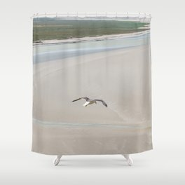 Seagulls flying on sea Shower Curtain