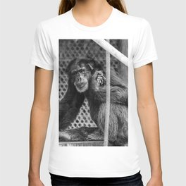 Zoo Animal T-shirt