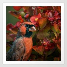 Cardinal Bird Red Flowers Art Print