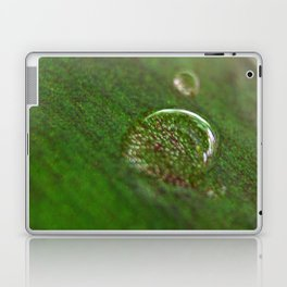 Nature's Magnifying Glass Laptop & iPad Skin