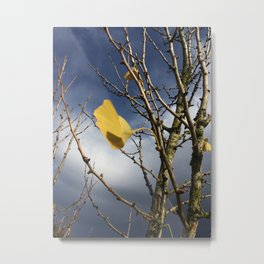 Ginkgo Tree in Fall of Oregon Metal Print
