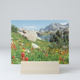 August Wildflowers in the Rockies Mini Art Print