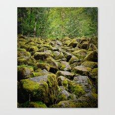 Oregon Path Canvas Print