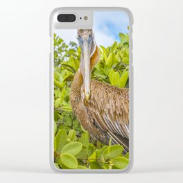 Big Pelican at Tree, Galapagos, Ecuador Clear iPhone Case