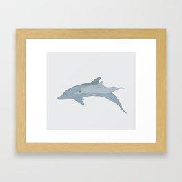 Bottlenose Dolphin Mother and Calf Framed Art Print