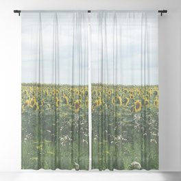 Field of Sunflowers Sheer Curtain