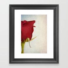 Half-a-rose Framed Art Print