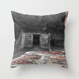 Ruins Throw Pillow