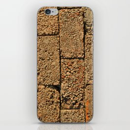 old wall of cinder blocks iPhone Skin
