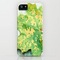 Halfway Gone Slim Case iPhone (5, 5s)