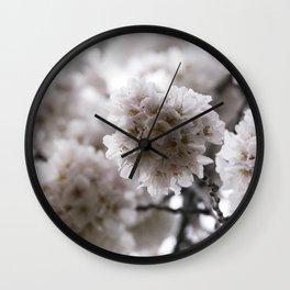 Light Pink Cherry Blossoms Photograph Wall Clock