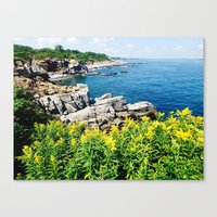 maine Canvas Prints featuring Maine  Coast by S. Miste
