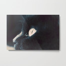 The Stare Metal Print